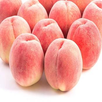 Саженцы персика Пинк Пич в Батайске